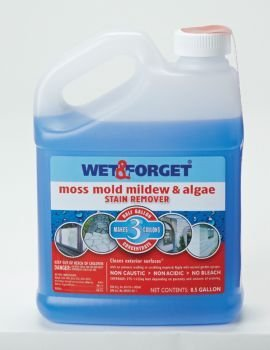 Wet And Forget 10587 1 Gallon Moss Mold And Mildew Stain Remover