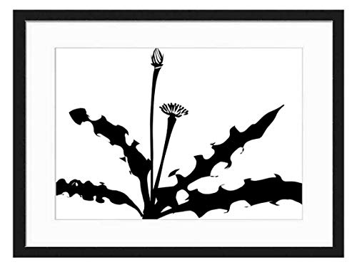 Wood Framed Canvas Artwork Home Decore Wall Art Black White 20x14 inch - Dandelion Weed Plant Silhouette Leaves Flowers