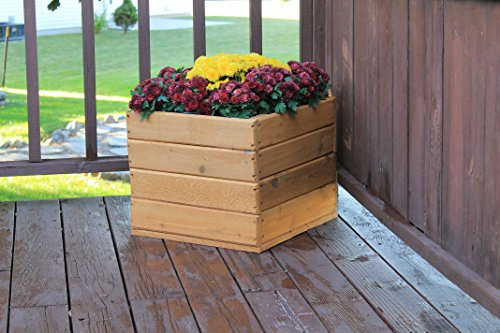 Raised Planter Box 195L X 185W X 16H Exclusive Natural Cedar Stained and Sealed  Exclusive Premium Lil Poz Creations Cedar Model with Hand Crafted Router Chamfer Designs on All 4 Faces Ideal for Most Surface Settings 100 Premium Natural Rustic C