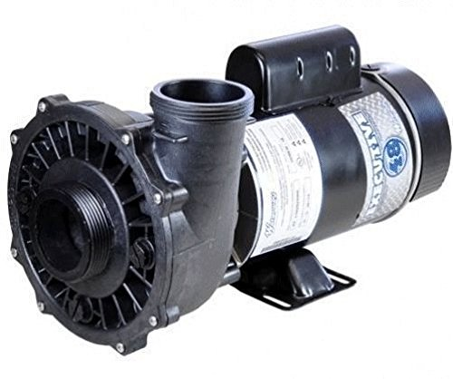 Waterway Plastics 3420820-1A 2 hp 230V 2-Speed 2 x 2 48 Frame Executive Spa Pump Side Discharge