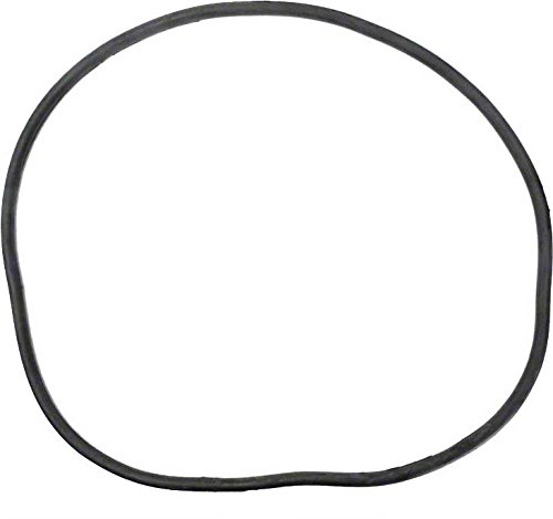 Pentair 27001-0061s Body O-ring For Tank Replacement For Select Sta-rite Pool And Spa Filters