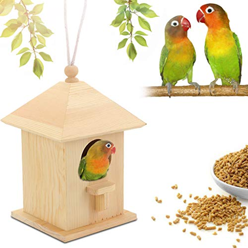 Denzar Window Bird Feeder - Large Bird House for Outside- Easy Cleaning Refills Comes with Hook to Hang on Tree Great Gift