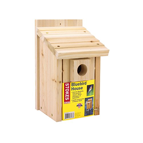 Stokes Select Bluebird Nesting House Natural Wood