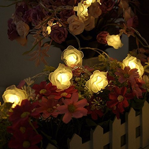 M&ampt Tech 30 Led Rose Flower Fairy String Lights Battery Operated For Christmas Tree Indoor Outdoor Decoration
